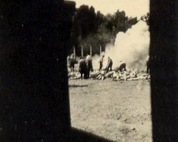 Auschwitz_Resistance_281