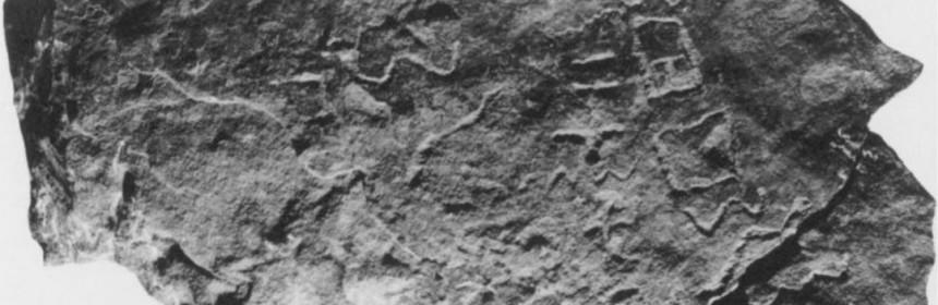 """Sinai 316, morceau de stèle en pierre provenant d'Egypte qui contient le nom """"Moïse"""" selon le Pr Douglas Petrovitch"""